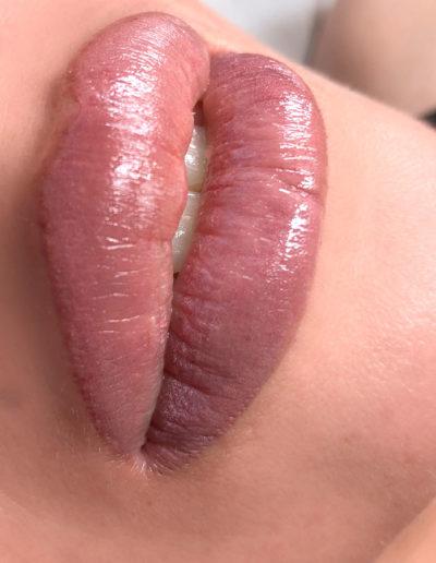 glossy-lip